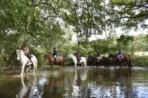 equitation-ferme-du-chemin-a-madr-cp-p-beltrami-mayenne-tourisme-54